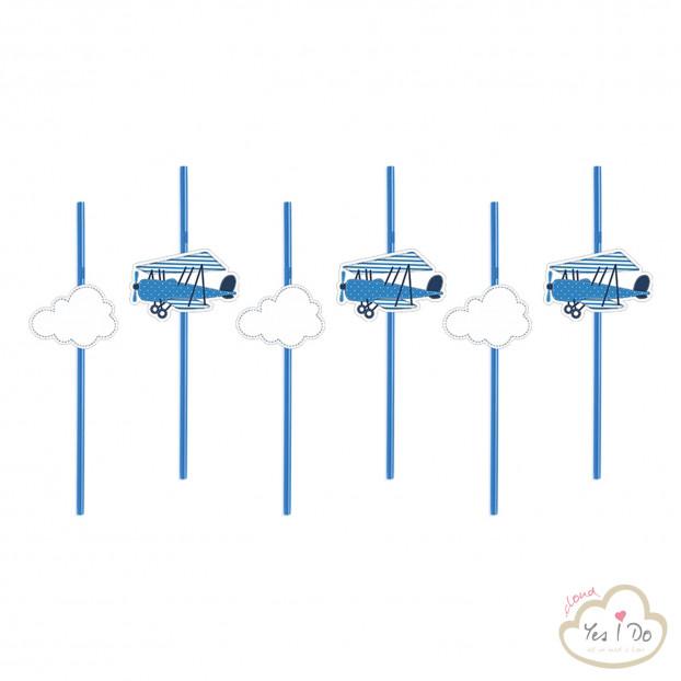 6 BLUE STRAWS LITTLE PLANE